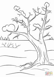 Winter Tree coloring page | Free Printable Coloring Pages