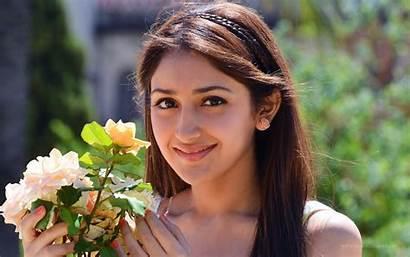 Telugu Actress Sayesha Saigal Wallpapers