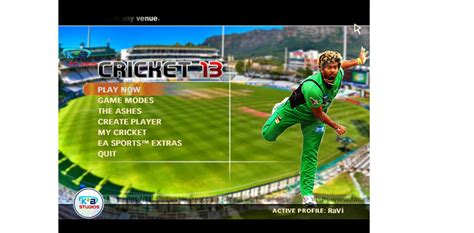 ashes cricket 2013 free