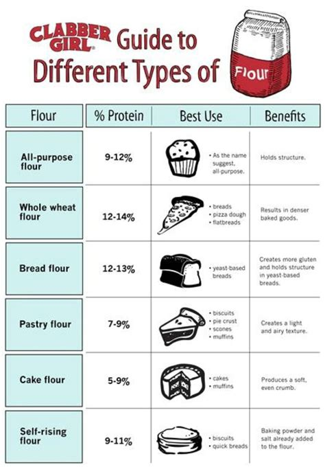 Different Types Of by 60 Professional Cooking Diagrams And Charts That Simplify
