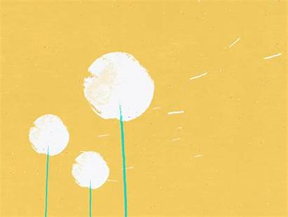 Dandelions Wind Animated Dribbble Gifs March Animation