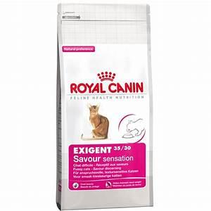 Royal Canin Exigent : buy royal canin exigent savour sensation 35 30 2kg ~ Eleganceandgraceweddings.com Haus und Dekorationen