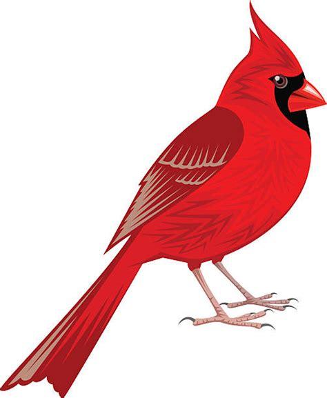 Cardinal Clipart Clipart Cardinal Danielbentley Me
