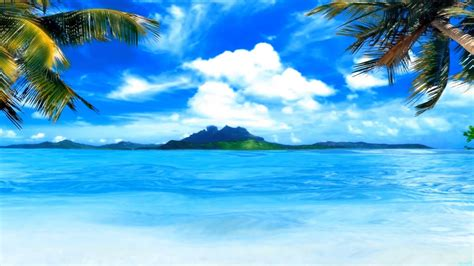 Animated Tropical Wallpaper - moving wallpaper wallpapersafari