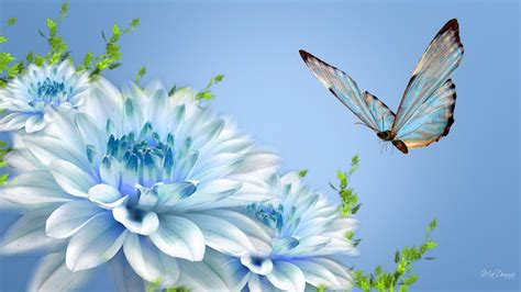 nature flower wallpapers wallpaper cave