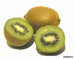 kiwifruit - définition - What is