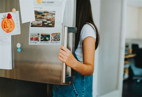 refrigerator food safety tips appliance san diegos  appliance repair service