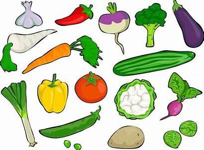 Clip Vegetable Medley Vegetables