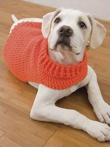 Hunde Sachen Kaufen : doggie sweater crochet roupas para animais de estima o roupa para c es und roupas para pet ~ Watch28wear.com Haus und Dekorationen