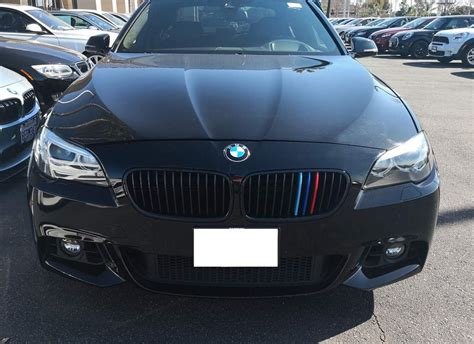 bmw    series kidney grille  colored grill insert