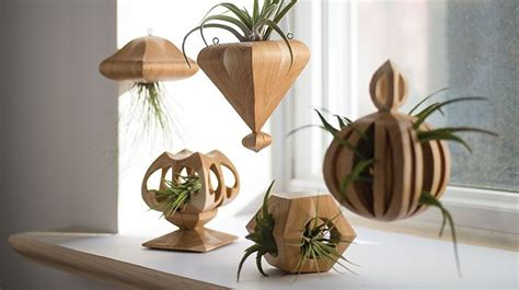 simple wooden air plant holders scroll