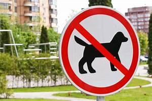 Vermieter Verbietet Hund : wann darf der vermieter hunde verbieten ~ Lizthompson.info Haus und Dekorationen