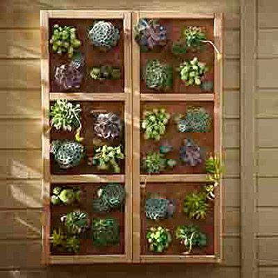build a vertical garden wall the great outdoors