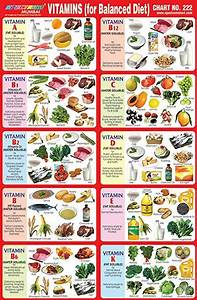 Image Result For Balanced Diet Chart For School Project
