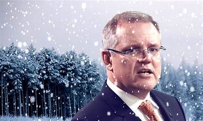 Scott Morrison Civil War Liberals Target Scomo