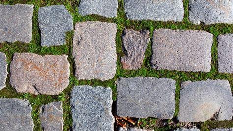 moos steinen entfernen moos entfernen hausmittel hilft gegen moos an mauern und im rasen