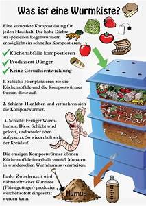 Kompost Anlegen Anleitung : wurmkisten wurmfarmen zum kompostieren ~ Watch28wear.com Haus und Dekorationen