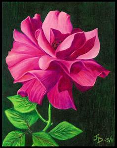 Photos: Colored Pencil Drawings Of Flowers Abstract ...