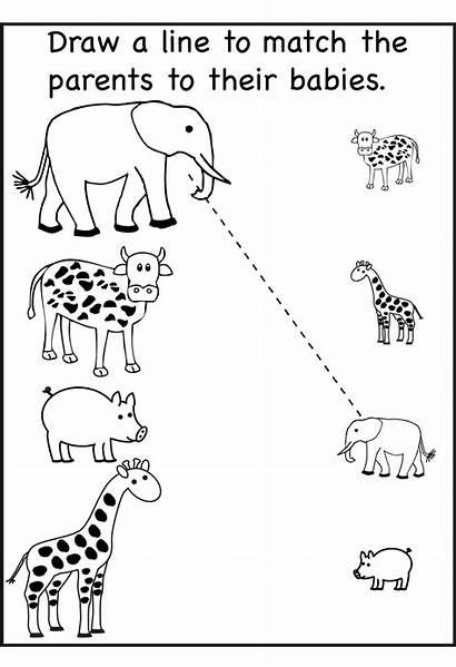 Fun Worksheets Printable Worksheet Matching Activity Via