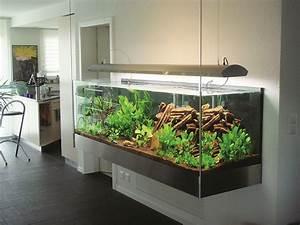 Aquarium Einrichten Beispiele : aquarium die unterwasserwelt aquarium aquarium aquarium einrichten und unterwasser ~ Frokenaadalensverden.com Haus und Dekorationen
