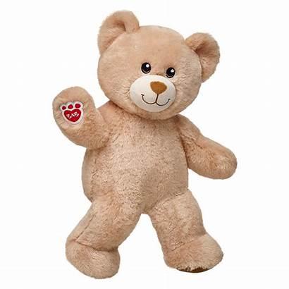 Teddy Bear Transparent Stuffed Pngimg Pngmart