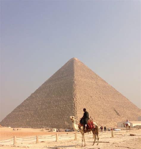 peta  egypt follow  idiot