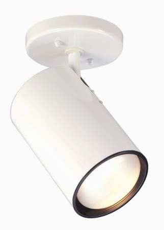 ceiling mount light fixture directional cylinder