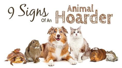 signs   animal hoarder