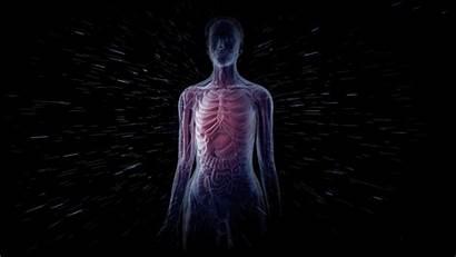 Human Radiation Space Nasa Risky