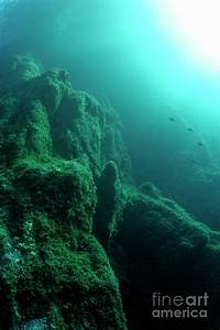 Rock Formations Underwater Photograph by Sami Sarkis