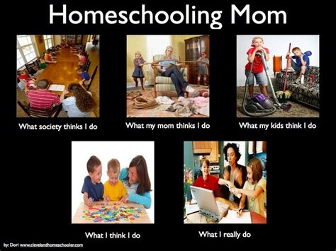 Homeschool Memes - pretty humorous one for the moms too