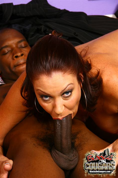 free porn samples of blacks on cougars hungry white cougar fuck bbc