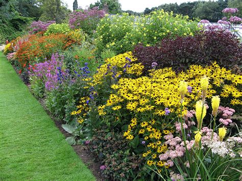 how to design a herbaceous border how to design and plant herbaceous borders