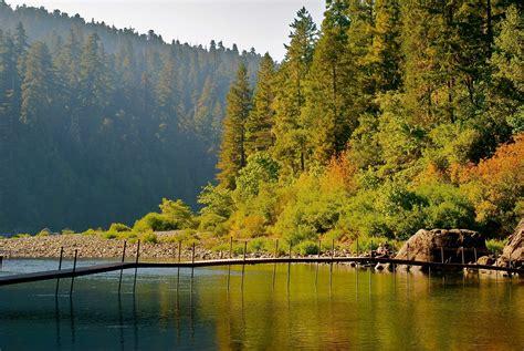 jedediah smith redwoods sp image gallery