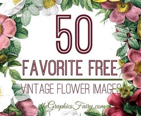 favorite  vintage flower images vintage flowers