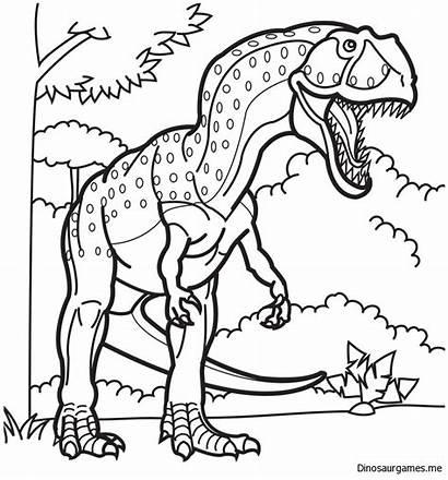 Dinosaur Coloring Head Pages Giganotosaurus Printable Getcolorings