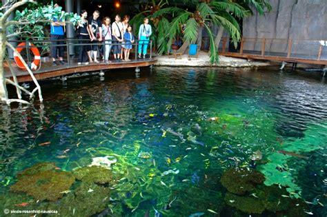 aquarium boulogne sur mer nausicaa aquarium boulogne sur mer