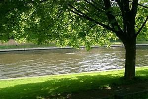 Baum Am Wasser : anikas fotos landschaft baum am wasser ~ A.2002-acura-tl-radio.info Haus und Dekorationen