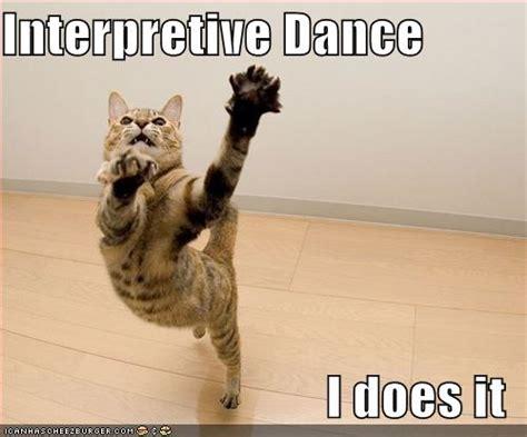 Dancing Cat Meme - funny cat dance all funny