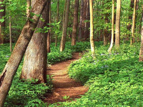 oakwoods nature preserve hancock parks district