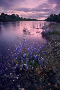 American River Parkway Sacramento CA