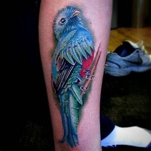 Quetzal Bird Tattoo | www.pixshark.com - Images Galleries ...