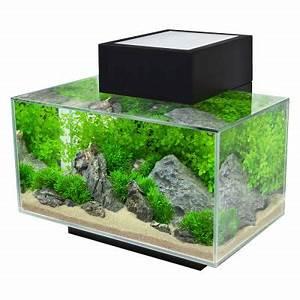 Aquarium Zubehör Günstig : fluval edge i g nstig bei zooplus ~ Frokenaadalensverden.com Haus und Dekorationen