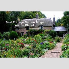Top 10 Cottage Garden Blogs & Websites For Cottage