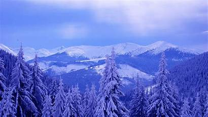 Winter Forest Mountains Mountain Desktop Snow 2560
