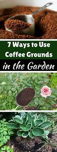 7 ways to use coffee grounds in the garden coffee