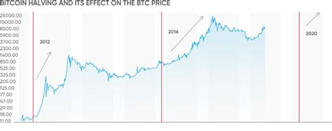 Roubini before or in 2020 and later: Bitcoin Price Projection 2020 Bitcoin Halving Chart - TRADING
