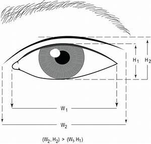 Asian Eyelid Surgery Center