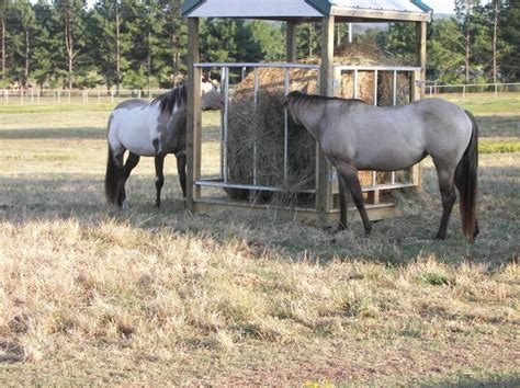 hay feeders for horses hay feeders plans my hubby built this to save on