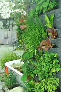 Pflanzen An Der Wand : vertikale mischkultur urban garden an der wand ~ Articles-book.com Haus und Dekorationen